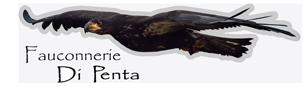Fauconnerie Marco Di Penta